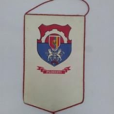 FANION ȘCOALA SPORTIVĂ PLOIEȘTI ANII 1980