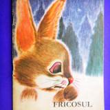 Carte de povesti - FRICOSUL Emil Garleanu