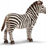 Figurina Animale Schleich - Figurina Animal Zebra Mascul - 14391