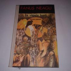 Nuvela - FANUS NEAGU - IN VAPAIA LUNII