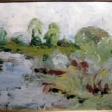 Peisaj in delta dunarii semnat Nastasi tablou inramat pictura in ulei pe carton - Pictor roman, Peisaje, Ulei, Realism