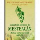 Extract din seminte de mesteacan 50 ml (BETULA VERR) - Remediu din plante