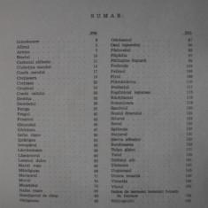 PLANTE MEDICINALE DIN FLORA SPONTANA SI SUBSTITUIRILE LOR, 1975