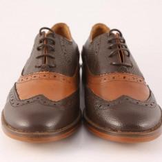 Candrani Oxford Maro cu Coniac - Pantofi barbati