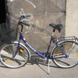 Bcicleta de ors - Bicicleta Dama, 19 inch, 26 inch, Numar viteze: 3