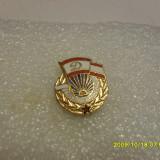 insigna     Tinarul   Dinamovist