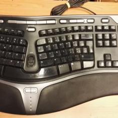 Tastatura PC Ergonomica Microsoft 4000 V1.0 Usb SWISS Usb, Cu fir