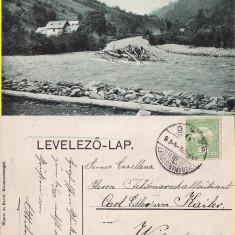 Maramures-Plute pe Tisa-tipuri, rara - Carte Postala Maramures 1904-1918, Circulata, Printata