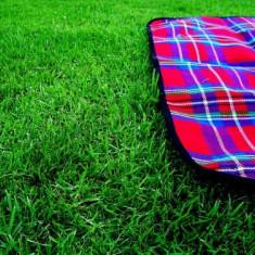 Patura confortabila pentru picnic!