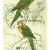 Sao Tome 1992 - papagali, colita stampilata