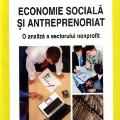 Mihaela Vlasceanu - Economie sociala si antreprenoriat - 605461 - Carte Management
