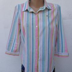 Camasa cu dungi LACOSTE originala - Camasa dama Lacoste, Marime: M/L, Culoare: Multicolor, Maneca 3/4, Universala, Bumbac