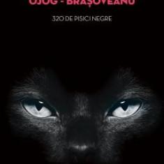 Rodica Ojog-Brasoveanu - 320 de pisici negre - 578662 - Carte de aventura
