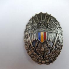 Insigna Academia Militara, model 1990