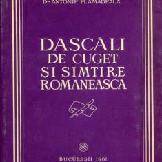 Antonie Plamadeala - Dascali de cuget si simtire romaneasca - 423887 - Carte Sociologie