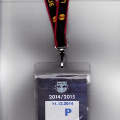Bilet meci - Acreditare meci fotbal RED BULL SALZBURG - ASTRA GIURGIU 11.12.2014