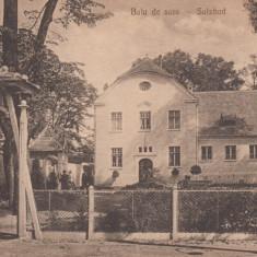 SEBESUL SASESC, BAIA DE SARE - Carte Postala Transilvania 1904-1918, Necirculata, Printata