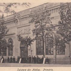 NADLAC, ARAD, SALUTARE DIN NADLAC, PRIMARIA - Carte Postala Crisana dupa 1918, Necirculata, Printata