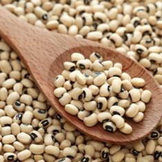 Fasole ´´Ochi negru ´´Vigna unguiculata - 5 seminte pentru semanat