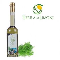 Lichior din fenicul salbatic Terra di Limoni, 30%, 50CL