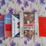 Manuale si culegeri Liceu + Bac - Teste Bacalaureat Altele