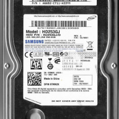 HDD 250 GB S-ATA II Samsung SpinPoint F3 3 5