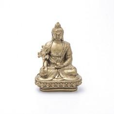 Statueta cu Buddha medicinei mare