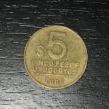 Moneda 5 pesos Uruguay 2005, America Centrala si de Sud