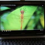 Laptop Toshiba L40 15 6 inch plus cadou geanta transport