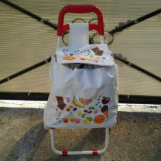 Carucior piata cu 2 roti de copii