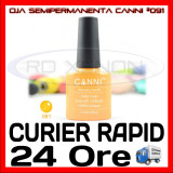 OJA SEMIPERMANENTA (PERMANENTA) #091 CANNI - MANICHIURA UV, Piersica