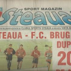 Steaua Sport magazin nr. 13/1-15 iulie 1996